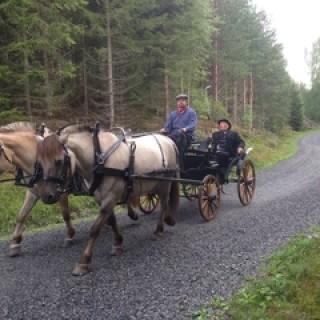 hest og vogn illustrasjon 1