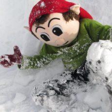 Risseaktiviteter i vinterferien