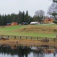 Gårdsbutikk på Mattisrud