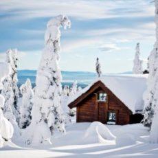 Årets utbygging av hyttefelt i Budorområdet