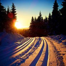 Flotte skiforhold på Budor!
