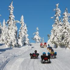 Budor Ski – og kjelkeanlegg vinteren 2020