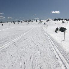 Fortsatt skiløyper på Budor