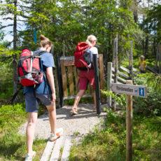 Turforslag: Budor – Korperud – Øisætra
