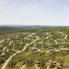 Hogst av trær i hyttefelt i 2021