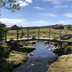 Turforslag: Budor – Bjørkvolla