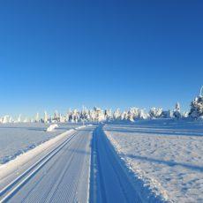 Turtips på ski: Støregarden – Gitvola