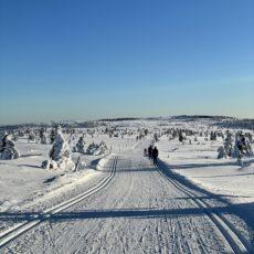 Tusen takk for en fantastisk vintersesong!